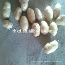 Fruta patata fresca china rojiza a buen precio