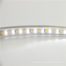 Nouveau produit usine 220 V smd 2835 8 w par mètre rgb + cct led bande de lumière