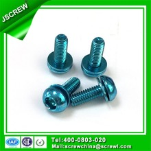 Torx Pan Head Sems Screw with Flat Washer