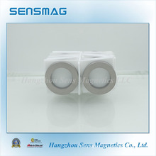 Customized Powerful Rare Earth SmCo Ring Magnet for Motor