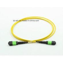 MPO / APC (männlich) -MPO / APC (weiblich) OS2 Fiber Optical
