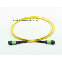 MPO / APC (mâle) -MPO / APC (femelle) OS2 Fibre Optique