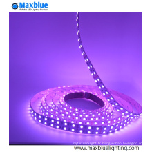 DC12V / 24V SMD5050 RGBW LED Light Strip