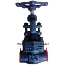 800lb 1500lb forjou a válvula de globo NPT da extremidade da linha do aço A105