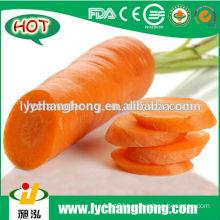 2014 hot sale fresh carrot of size S, M, L, 2L, 3L
