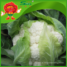 Preço fresco do competidor Couve-flor branca da couve-flor
