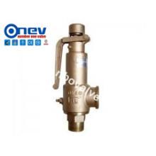 CE Ручной латунный предохранительный клапан Fnpt / Mnpt (A27Y)