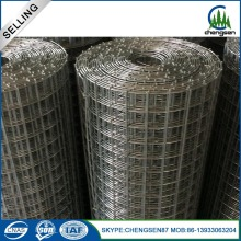 Galvanized Welded Rabbit Cage Wire Mesh Coils