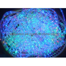 LED Rope Light (2Wires)