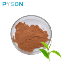 Grüntee-Extraktpulver 98% Teepolyphenole