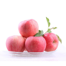 Hot Selling Chinese Newest Crop Fresh Fruit Red Fuji Apple