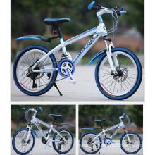 Double Disc-Brake 24 Inch MTB Mountain Bicycle Bike