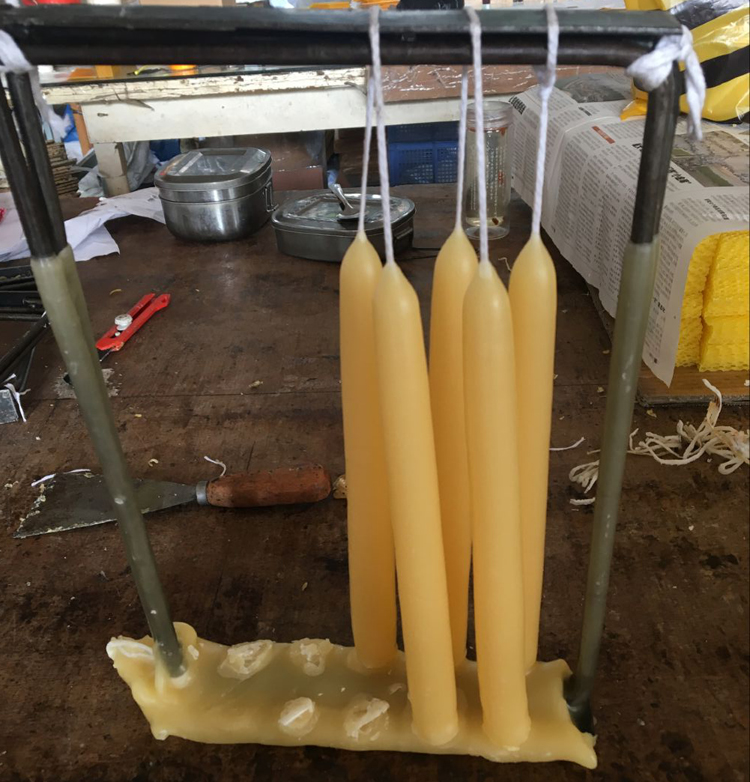 8inch Beeswax Taper Candle