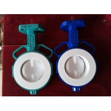 Two Shaft Butterfly Valve with PTFE Lined Disc
