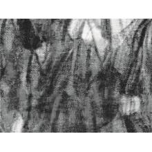 Цветок Сплетенный шерсти полиэфира напечатанное Тканье (СЗ-070)