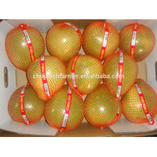 New Season High Quality Good Price Chinese Fresh Honey Pomelo