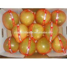 New Season High Quality Good Price Chinese Fresh Honey Pomelo