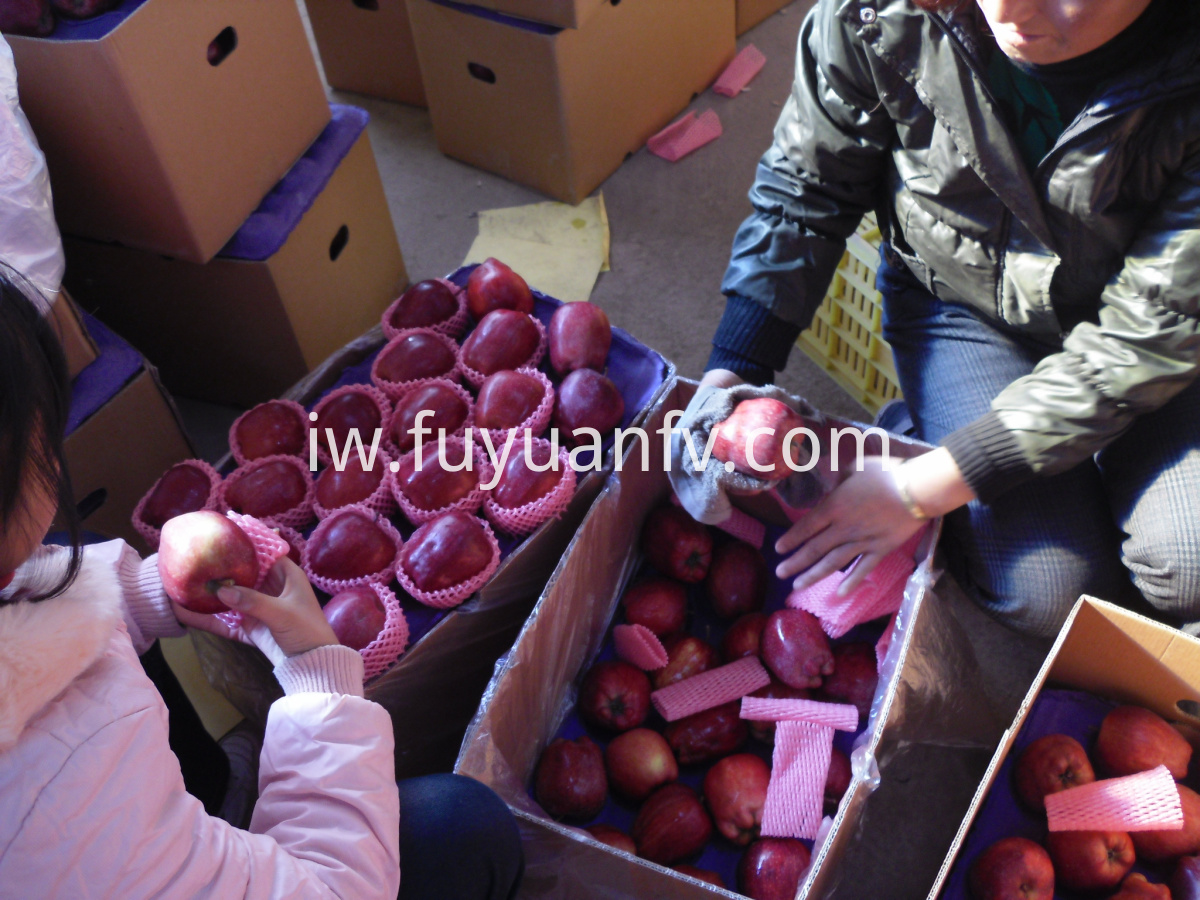huaniu apple supply
