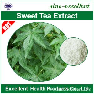 Hot Sale for Sweet Tea Extract Sweet Tea extract Rubusoside supply to New Zealand Manufacturer