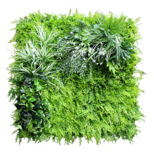 Sunwing cheap vertical green wall for office decoration