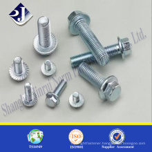 Main product flange bolt Zinc finished hex flange Din6921 M12 hex flange bolt