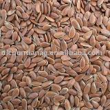 organic linseed/flax seed