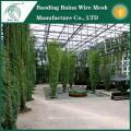 Plantas de escalada malla de alambre de acero inoxidable para soporte