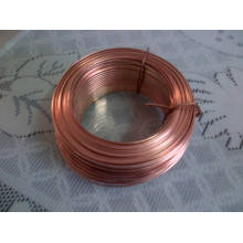 Brass Coated Flat Wire 0.7mmx2mm, 0.9mmx2mm