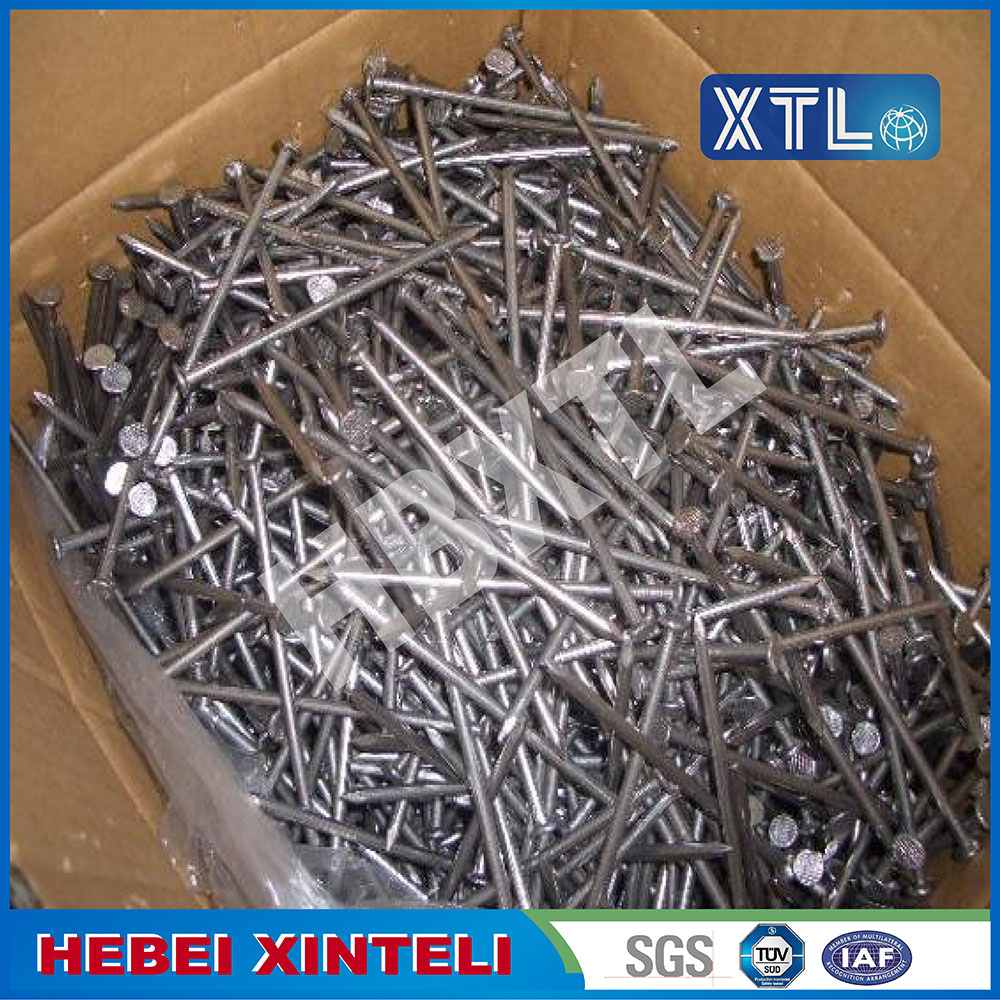 Electric Galvanized Smooth Shank Umbrella Roofing Nails