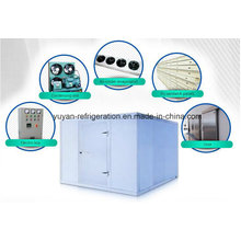PU Panel Fish Cold Rooms for Chiller and Freezer Applications