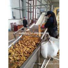 Линия предварительной обезвоженной овощной обработки
