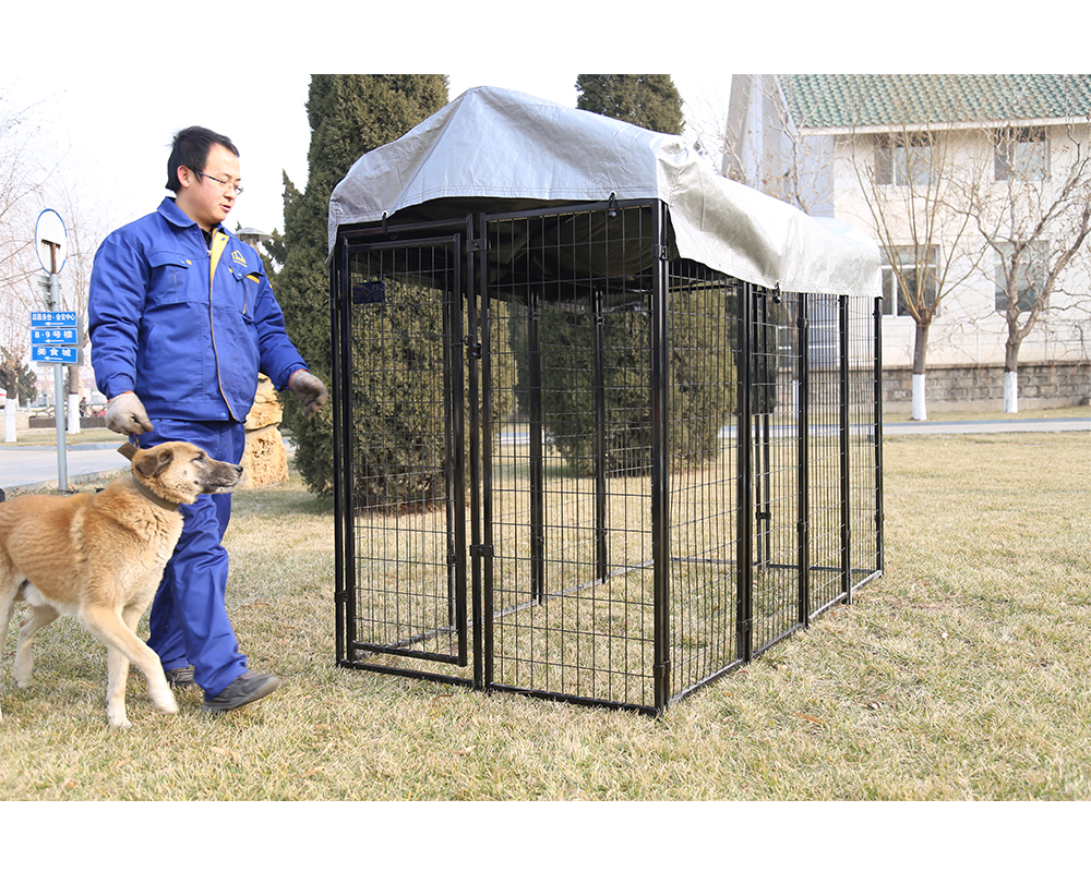 Outdoor Rustproof Large Kennel
