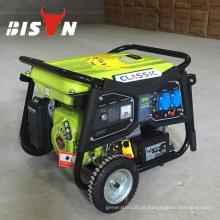 BISON (CHINA) Portable 8500w gasolina gerador, gerador de energia