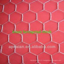 Maille hexagonale galvanisée de 2 pouces