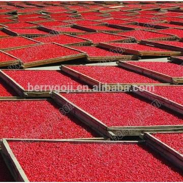 Китайские ягоды goji / lycium berry / Sun Dry