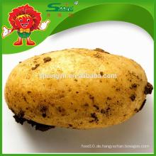2015 Großhandelspreis für große gefrorene gelbe Kartoffel