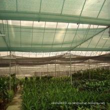 Sombra de la agricultura
