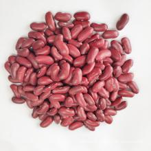 Dark Red Kidney Beans Long Shape Kidney Beans
