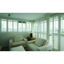Shutters From Splendid Company (SGD-S-4704)
