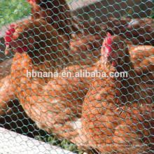 Red de alambre hexagonal del gallinero de pollo caliente de la venta 2018 / red de alambre hexagonal galvanizada