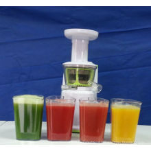 2013 Slow juicer juicer best with DC motor 150W