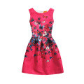 Wholesale Cheap Price Summer Fairy Sleeveless Little Girl Princess Children School Casual Wear Flower Girl Dress