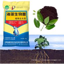 Fabricación de abono orgánico con Aminoácido añadido Promotor de Plantas