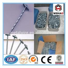 galvanized smooth twist shank umbrella roofing nails