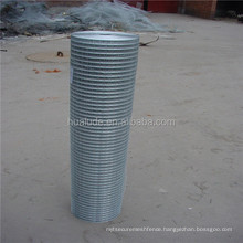 High quality Climbing Plant Support Mesh welded wire mesh