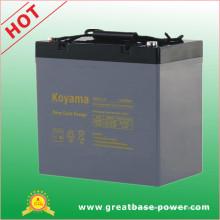 Batterie électrique 55ah 12V de fauteuil roulant de cycle profond de haute performance