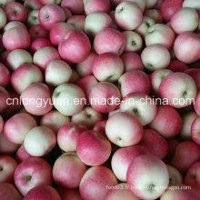 138-198 # Pomme de Gala Rouge avec Carton de 20kg