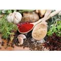 Manufacturer Supply Natural Garlic Extract Powder
