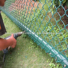 Plastic Coated Chain Link Fence (preço competitivo)