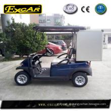 elektrische Golf Car Cargo, Mini-Cargo-Box, billige Aufbewahrungsbox für Golf-Auto